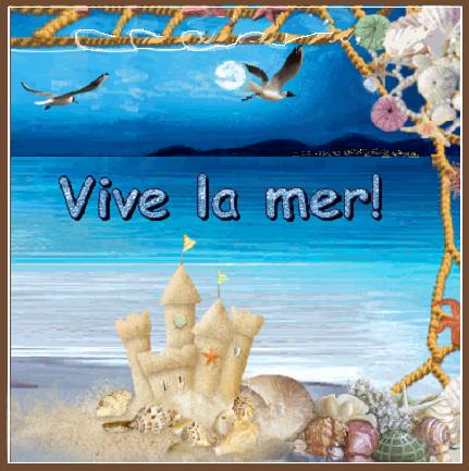 Vive La Mer Plage La Nuit Et Son Chateau De Sable