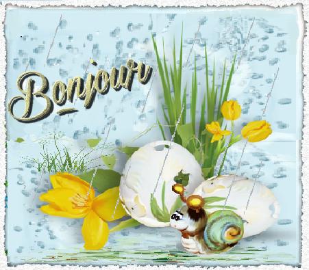 Bonjour Escargot Oeufs Sous La Pluie
