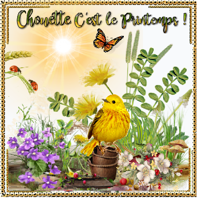 Chouette Cest Le Printemps Oiseau Jaune Et Papillon