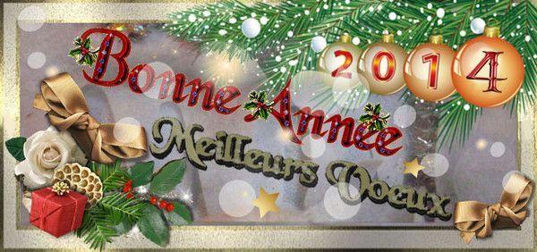 Bonne année 2014 meilleurs voeux